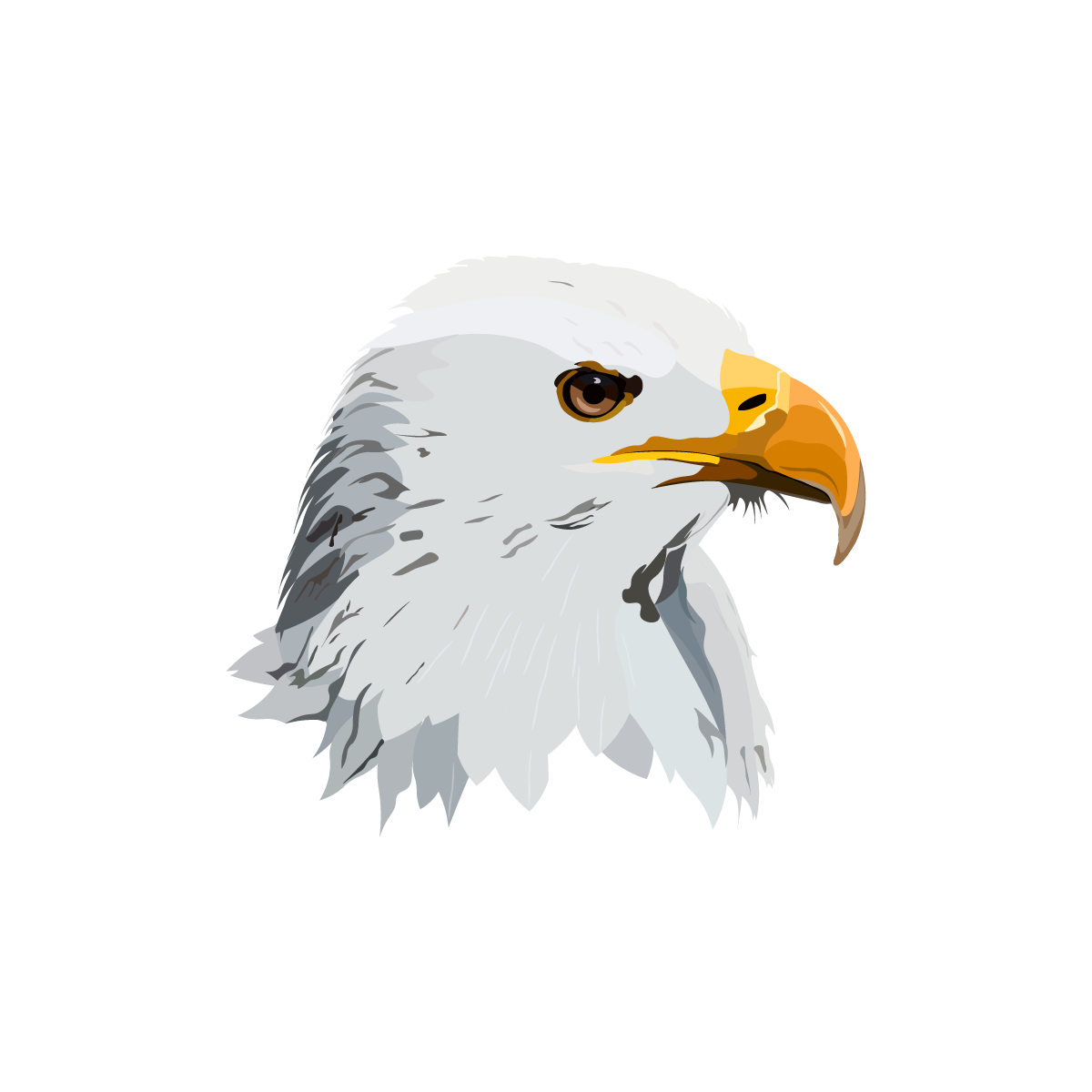 Avatar Aguila